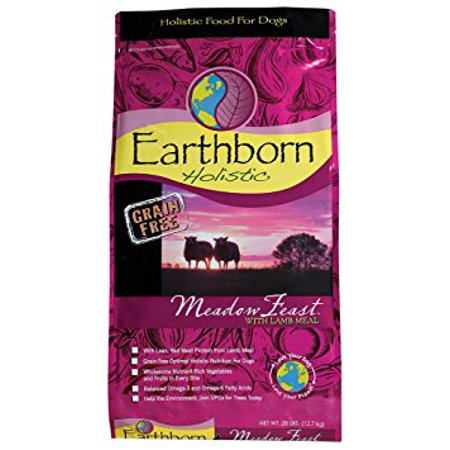 Earthborn Holistic Grain-Free Meadow Feast With Lamb Natural Dry Dog Food,  28 LB