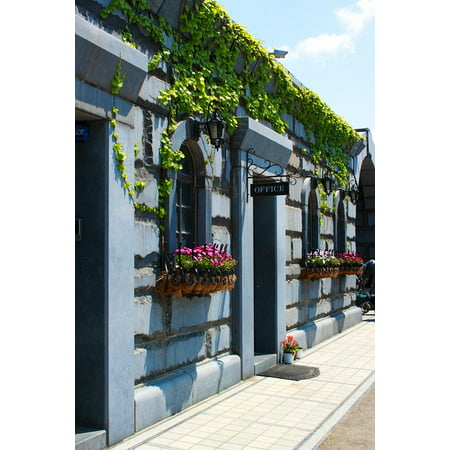 Framed Art for Your Wall Wall Gateway Moon Fence Entrance Ivy The Vine 10x13 (Gateway Entrance)