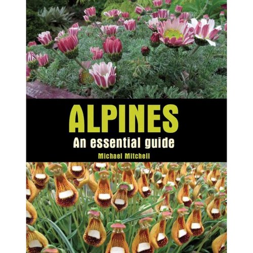 Alpines: An Essential Guide