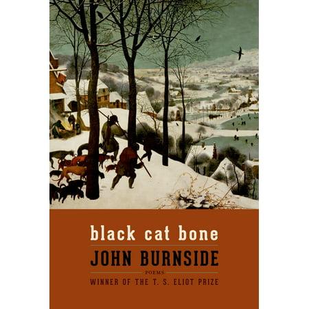 Black Cat Bone : Poems - Black Cat Bones