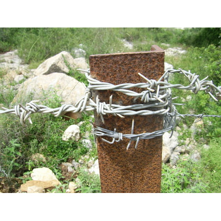 LAMINATED POSTER Rusty Galvanized Wire Iron Metal Barbed Pole Poster Print 24 x 36