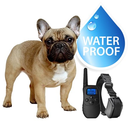 eXuby Small Dog Waterproof Shock Collar & Remote - Includes 2 Collars (Small & Medium) + Free Dog Clicker Training - 3 Modes (Sound, Vibration & Shock) - Rechargeable Batteries Saves