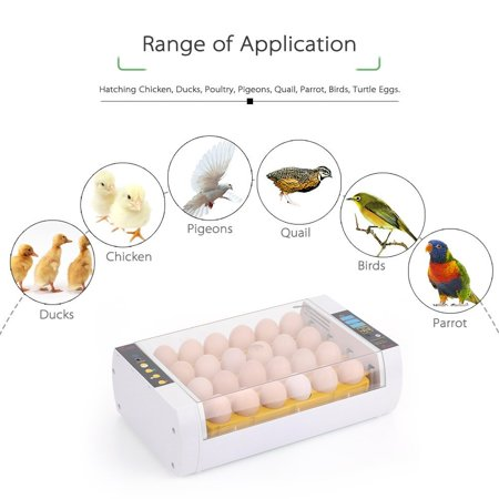 Ktaxon Digital Mini Fully Automatic Egg Incubator 24 Eggs Poultry Hatcher for Chickens Ducks Goose Birds
