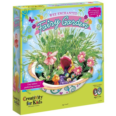 Fairy For Kids (Creativity for Kids Wee Enchanted Fairy Garden)