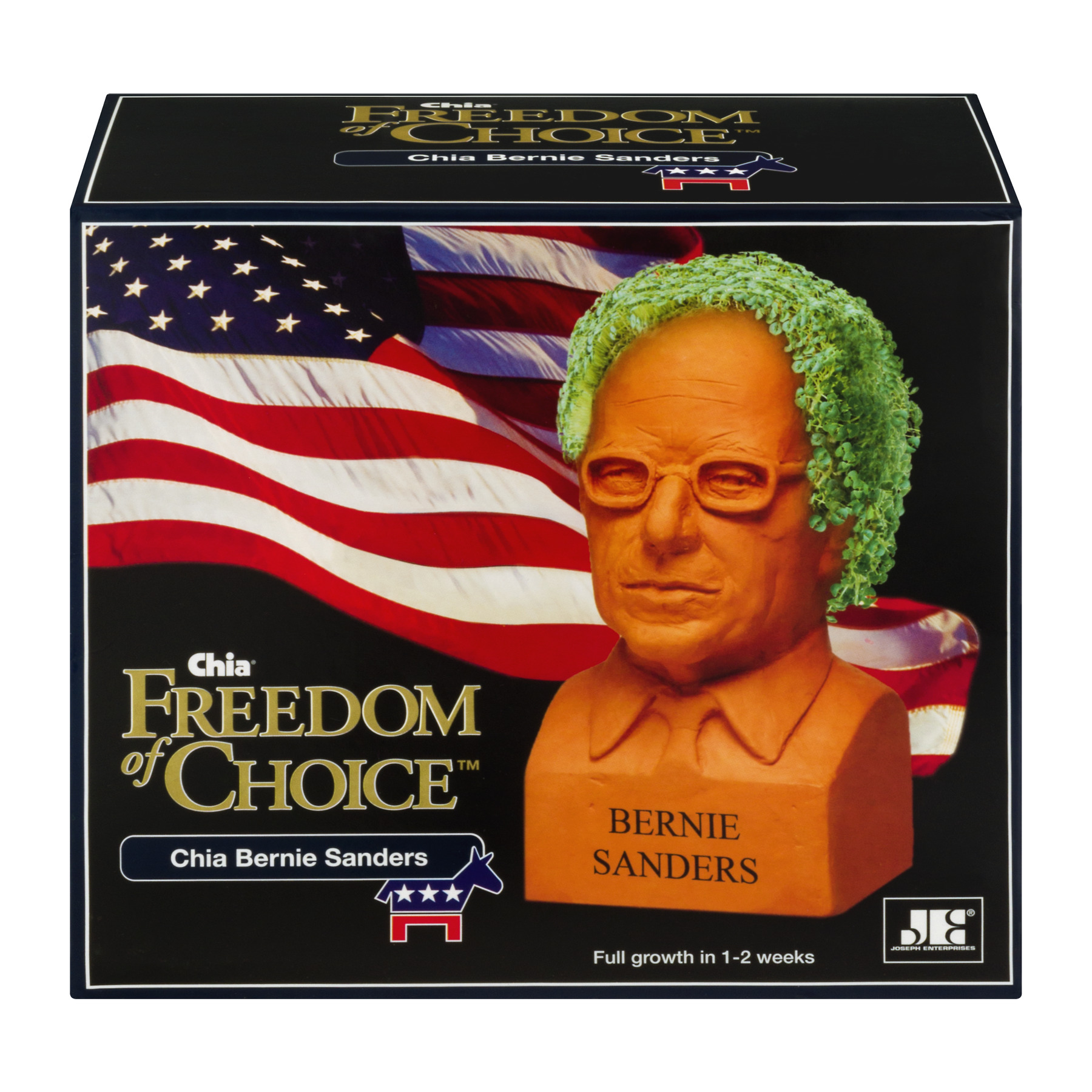 As Seen on TV - Chia Bernie Sanders