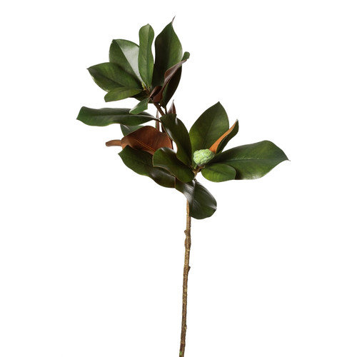 Teters Floral Green Magnolia Branch X2