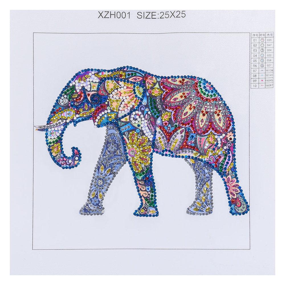 DIY 5D Full Diamond Painting Indian King Hoom Decor Cross Stitch Kits Gift