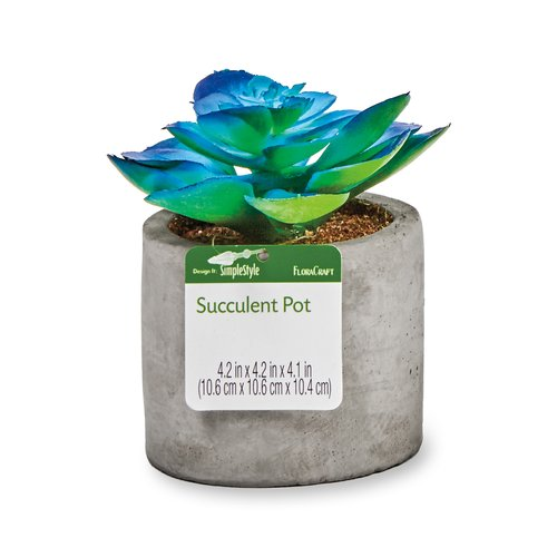 Floracraft Artificial Succulent, Premade Circular Pot, Blue