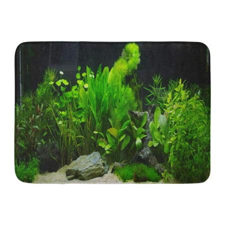 GODPOK Underwater Fish Plant Aquarium Aquascaping Tank Cichlid Rug Doormat Bath Mat 23.6x15.7 (Underwater Galleries Cichlid Stone)