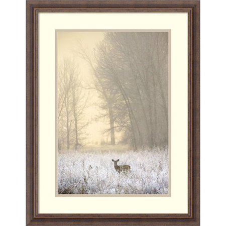 Darby Home Co White Tailed Deer In Fog Framed Photographic Print