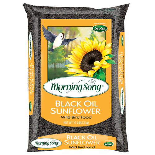Morning Song 10lb Black Oil Sunflower Seed