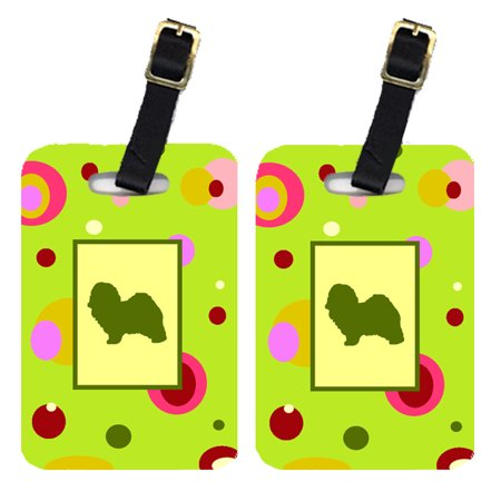 Pair of 2 Havanese Luggage Tags