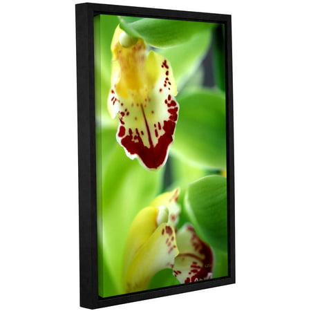 "Kathy Yates ""Cymbidium Sea Foam Emerald Orchid"" Floater-Framed Gallery-Wrapped Canvas"