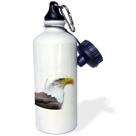 3dRose Bald Eagle bird of prey profile on white - eagle scout gifts - wild animal wildlife photography, Sports Water Bottle, 21oz](Sports Gifts)