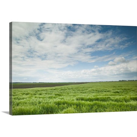 Great Big Canvas Walter Bibikow Premium Thick Wrap Canvas Entitled Hungary  Great Plain  Hungarys Cowboy Country Farm Fields