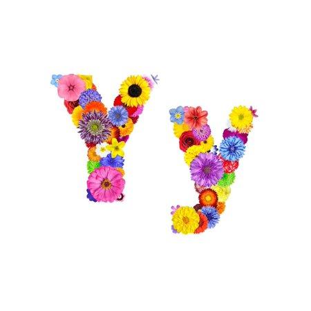Flower Alphabet Isolated On White - Letter Y Print Wall Art By tr3gi