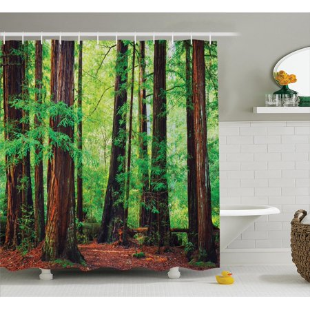 Woodland Decor Shower Curtain Set, Redwood Trees Northwest Rain Forest Tropic Scenic Wild Nature Lush Branch, Bathroom Accessories, 69W X 70L Inches, By Ambesonne ()
