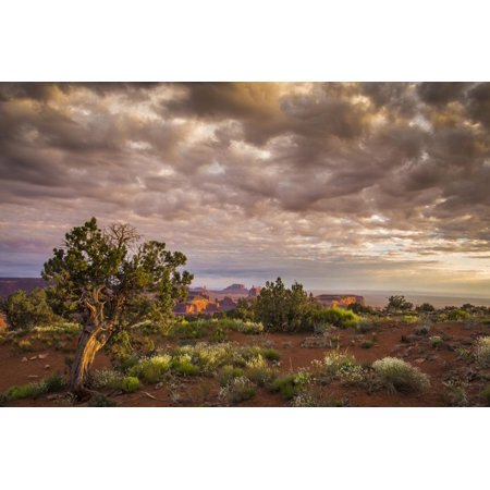 View from Atop Hunt's Mesa in Monument Valley Tribal Park of the Navajo Nation, Az Print Wall Art By Jerry Ginsberg - Halloween Stores In Mesa Az