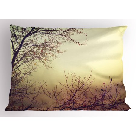 Nature Pillow Sham Vintage Leafless Autumn Tree Branches Background in Saturated Tones Ecology Art Picture, Decorative Standard Size Printed Pillowcase, 26 X 20 Inches, Sepia, by Ambesonne