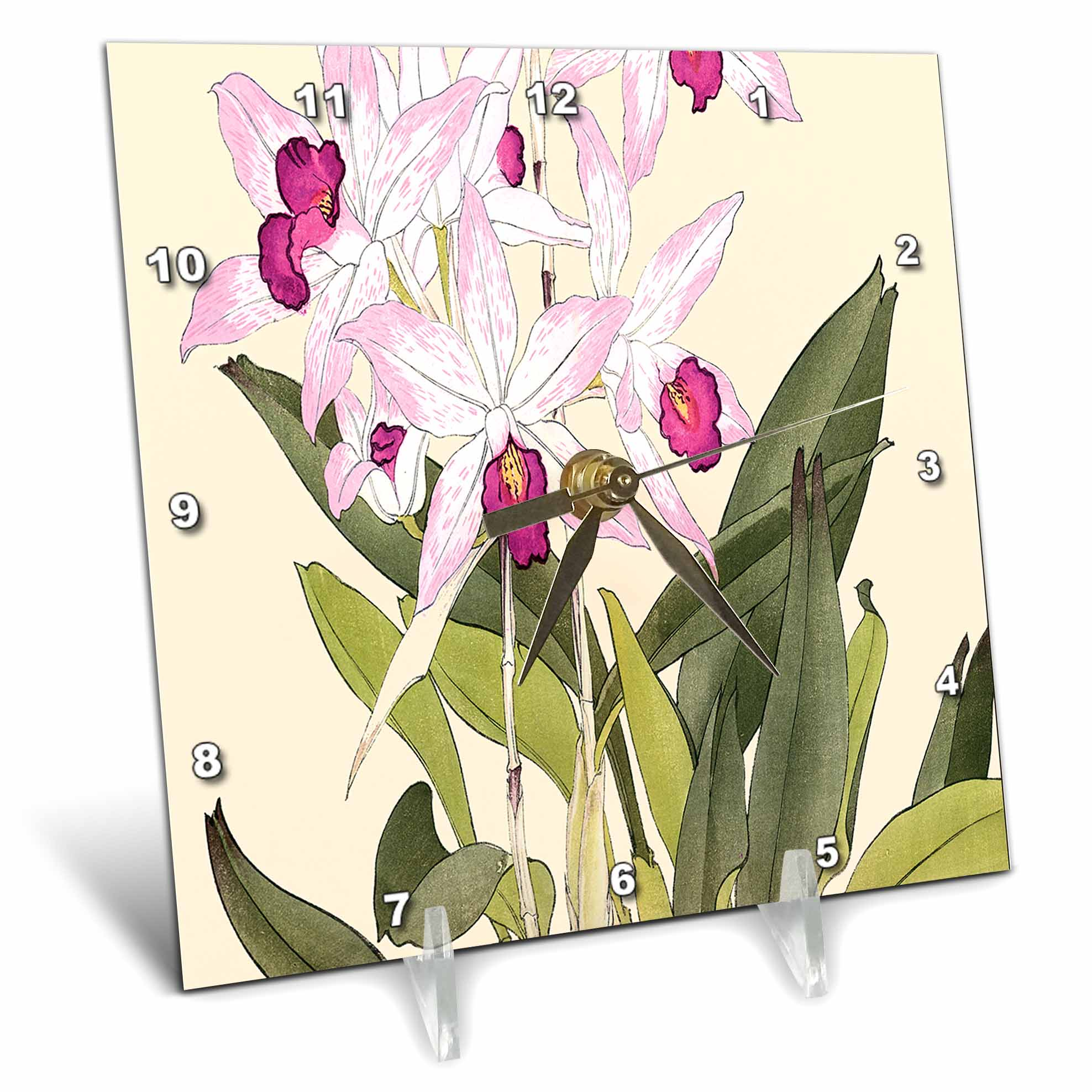 3dRose Pretty Light and Dark Pink Laelia Anceps Orchids, Desk Clock, 6 by 6-inch by 3dRose
