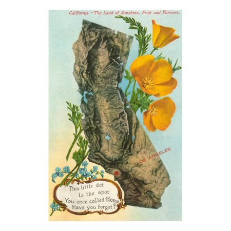 Relief Map of California, Poppies Print Wall Art - Walmart.com on