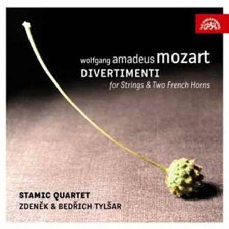 Divertimento for Strings & Two French Horns