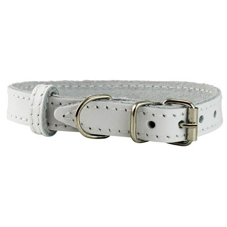 """Genuine Leather Dog Collar Smallest Dogs Puppies 3 Sizes White (Neck: 9.5""""-12""""; 5/8"""" Wide)"""