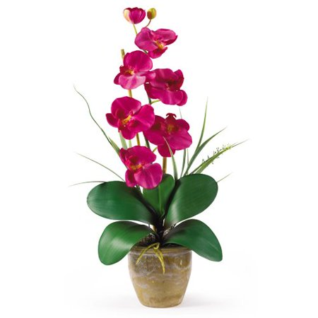 Nearly Natural Phalaenopsis Silk Orchid Flower Arrangement, Beauty](Halloween Flower Arrangement Ideas)