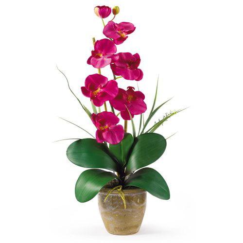 Nearly Natural Phalaenopsis Silk Orchid Flower Arrangement, Beauty