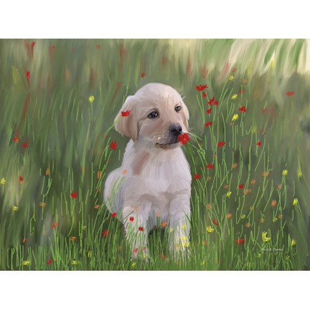 Computer Generated Portrait Of A Dog Sitting In A Field Of Wildflowers Canvas Art - Angela A Stanton  Design Pics (17 x 13)