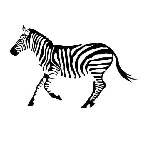 Dana Decals Tiny Zebra Wall Decal (Set of 50)