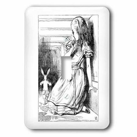 3dRose Follow the white rabbit. Alice in Wonderland John Tenniel illustration, Single Toggle