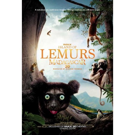 Island of Lemurs Madagascar IMAX 3D Movie Poster (11 x 17)
