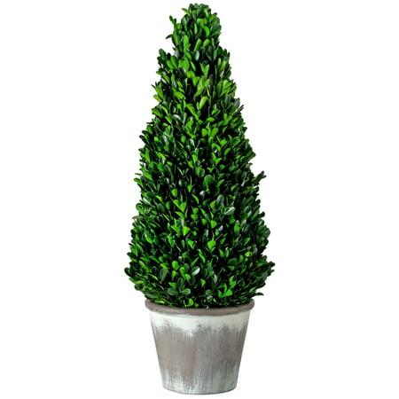 Regency 28 in. Artificial Ptd Presrvd Boxwood Cone Topiary, Green