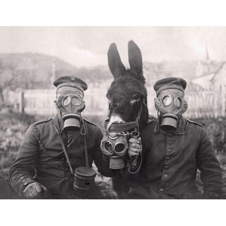 Acrylic Face Mounted Prints World War 1 Donkey Soldier Gas Mask Wwi Print 18 x 24. Worry Free Wall Installation - Shadow Mount is (Best Gas Mask In The World)