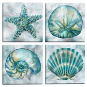 Elegant Shells I, II, III, IV by Studio Arts Set of 4 Canvas Prints