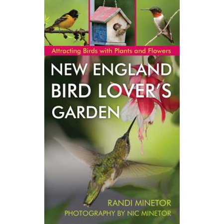 New England Bird Lover's Garden : Attracting Birds with Plants and