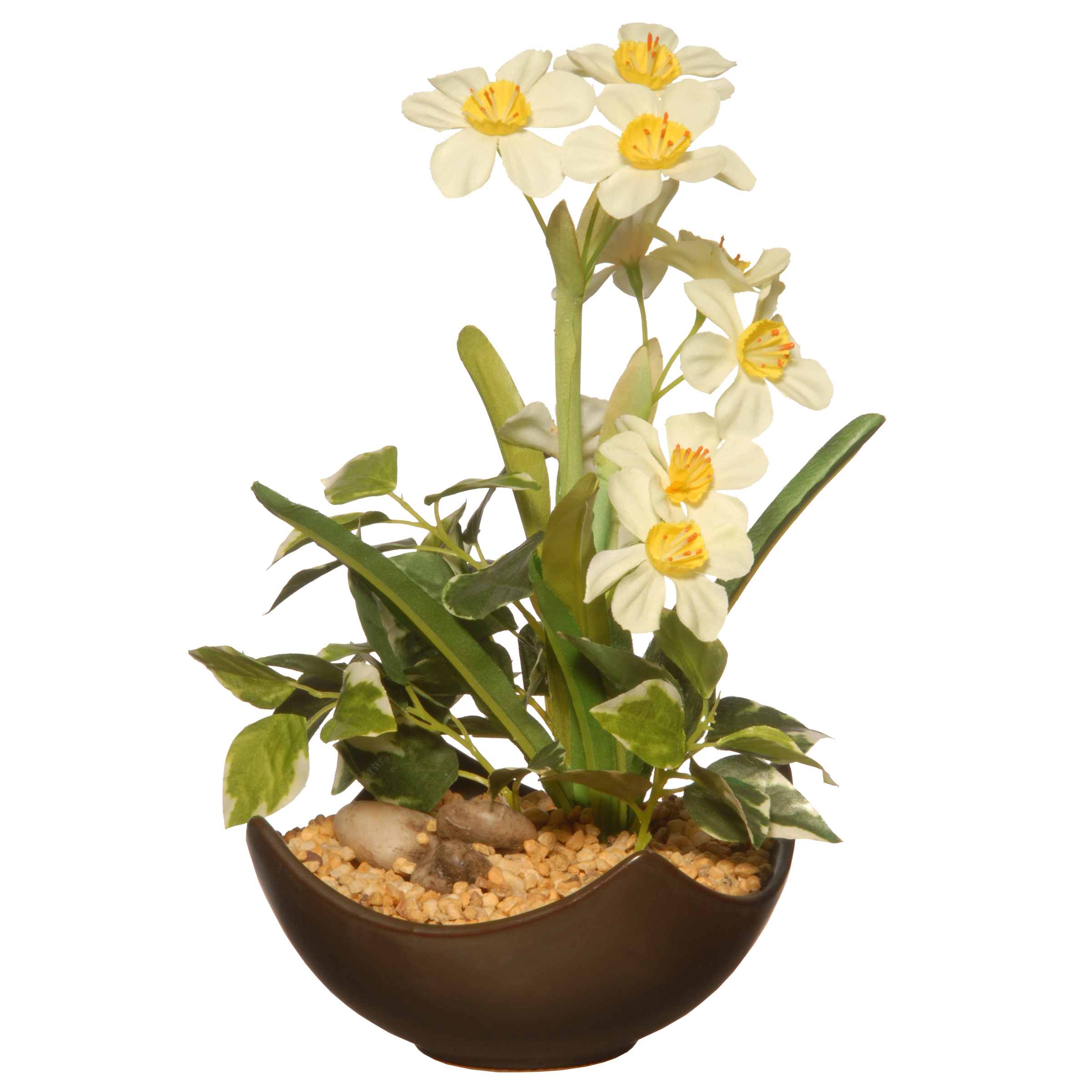 """National Tree Company 9"""" Potted Narcissus Plant"""