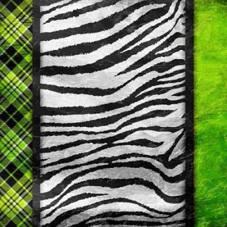Lime Zebra Plaid Poster Print by Jace Grey (24 x 24) ()