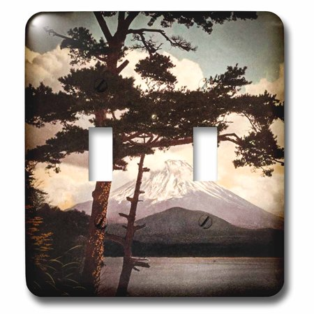 3dRose Vintage Mt. Fuji Through Forest View Antiqued Beautiful Japan - Double Toggle