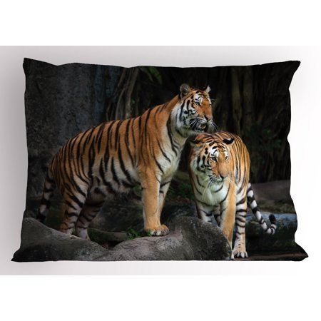 Animal Pillow Sham Tiger Couple in the Jungle on Big Rocks Image Wild Cats in Nature Image Print, Decorative Standard Size Printed Pillowcase, 26 X 20 Inches, Grey and Ginger, by