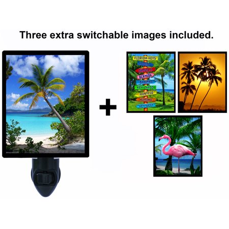 Night Light - Switchable Photos Included - Tropical Themes - Palm Trees - Flamingo - Italian Theme Night