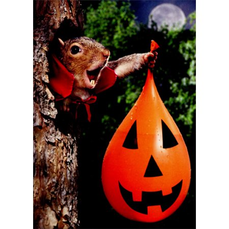 Avanti Press Vampire Squirrel Water Balloon Funny Halloween - Funny Halloween Party Stories