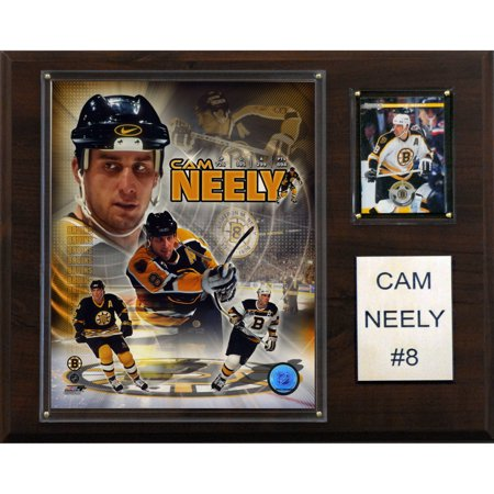 C&I Collectables NHL 12x15 Cam Neely Boston Bruins Player Plaque