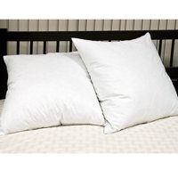 Euro Square Feather Pillow - Set of 2