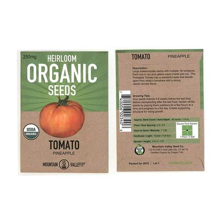 Tomato Garden Seeds - Pineapple - 250 mg Packet - Non-GMO, Organic, Heirloom, Vegetable Gardening - Pineapple Tomato