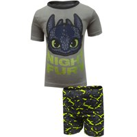 Intimo Boys' How To Train Your Dragon 2 Cotton Pajama
