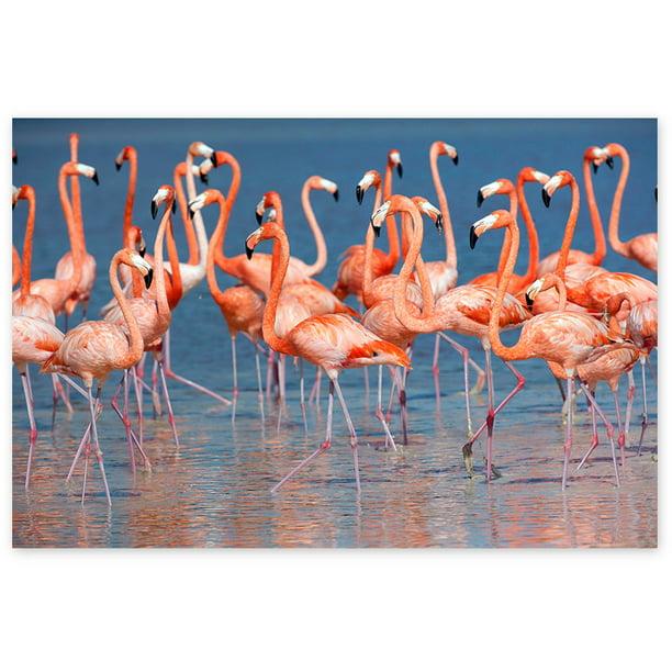 Awkward Styles Flamingo Room Decor Beautiful Flamingo Picture Pink Room Wall Art Flamingo Room Printed Wall Decor Flamingo Canvas Decor Ideas Ready to Hang Picture Home Decor Ideas Unique Decor Gifts