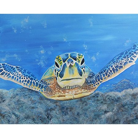 Turtle by Ed Capeau 30x24 Canvas Giclee Gallery Wrapped Edition Art Print Poster Wall Decor Under the Sea Sealife Tropical Ocean