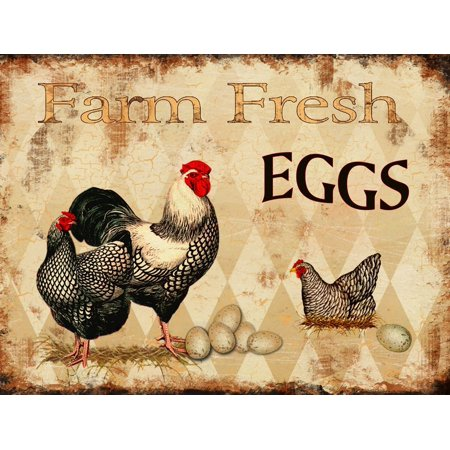 Barnyard Designs Farm Fresh Eggs Retro Vintage Tin Bar Sign Country Home Decor 13  X 10